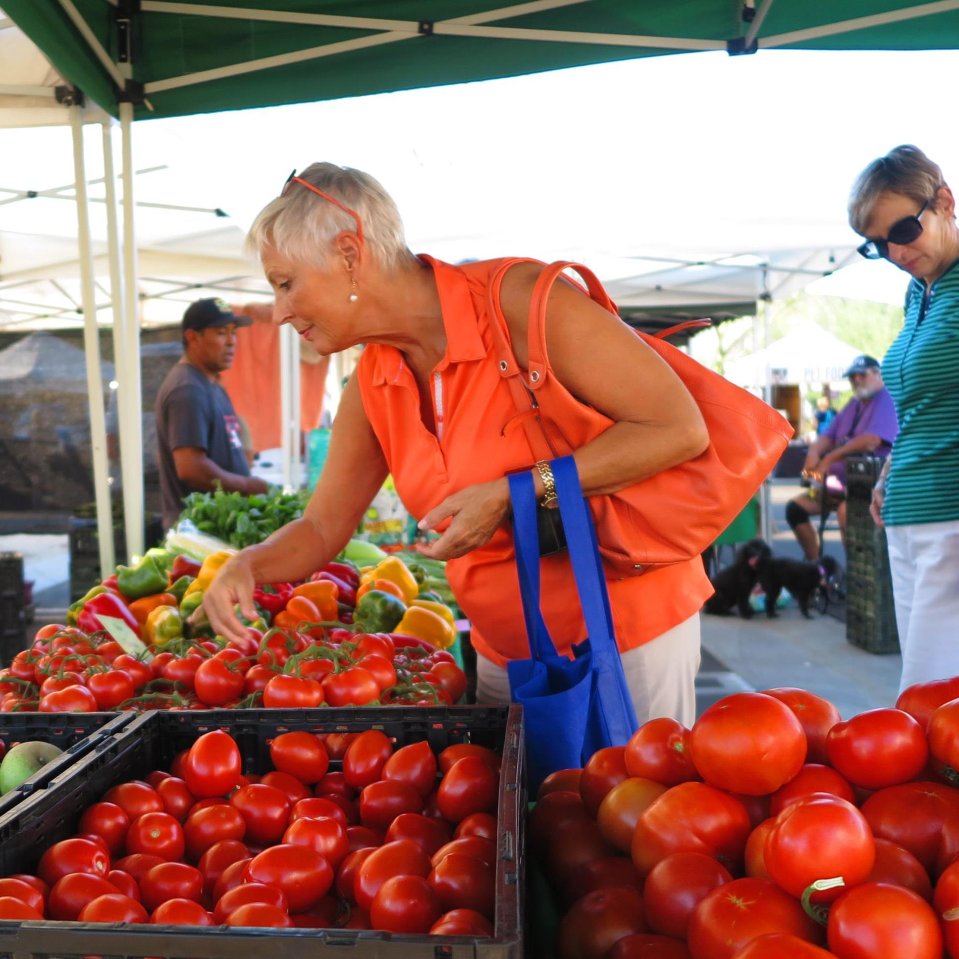 Palm Desert Farmers' Market, shopper tomatoes