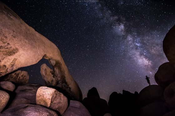 Solitary figure outlined against night sky, Joshua Tree National Park