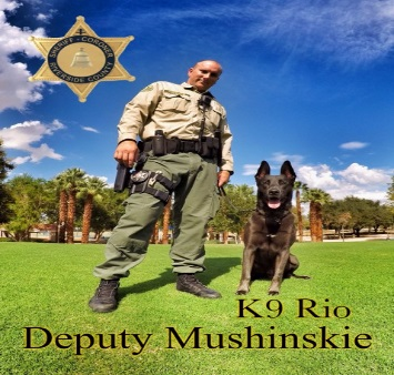 K9 Deputy Mushinskie